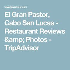 El Gran Pastor, Cabo San Lucas - Restaurant Reviews & Photos - TripAdvisor
