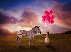 Imaginary child portraits girl balloons and zebra with sunset creative art composite photography by Courtney Anderson - Cotton Cloud Photography in Sydney Australia