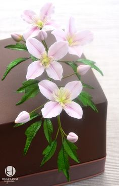 Chocolate Truffle Torte Cake With A Clematis Montana This Strong Scented Variety Has Four Slightly Ruffled Pretty Pink Petals And Delicate