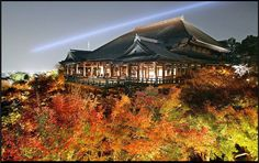 """Colored leaves surround the Kiyomizu Temple in Japan's ancient city Kyoto. The temple, whose namesake means """"Clear Water Temple,"""" was founded by a Buddhist sect in 798 and rebuilt in 1633 after a fire. Drinking from its three-stream waterfall is believed to deliver health, longevity and success."""