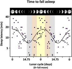 """bobbyfinger: *the """"OH SHIT"""" at the beginning of Fergie's """"London Bridge""""* (via Not Sleeping Well? Blame the Moon - James Hamblin - The Atlantic) Sleep Well, Scientific Journal Articles, Lunar Phase, Connect The Dots, Moon Phases, Full Moon, Blame, How To Fall Asleep"""