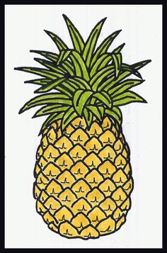 how to draw a pineapple | British-Israel.us - Lesson 34 - God's Handiwork -- Fibonacci Numbers