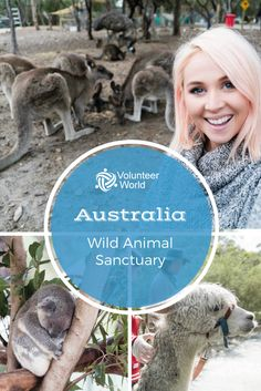 Are you looking for an amazing travel experience in Australia? Check the volunteer programs on our website!