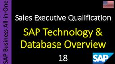 SAP - Course Free Online: 18 - SAP Technology & Database Overview