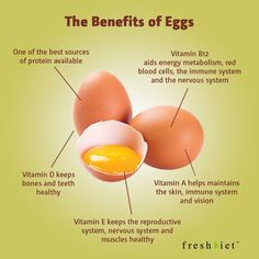 The benefits of Eggs - Health - Nutrition Tips, Health Tips, Health And Wellness, Healthy Kidneys, Eating Healthy, Healthy Foods, Health Benefits Of Eggs, Prevent Diabetes, Reproductive System