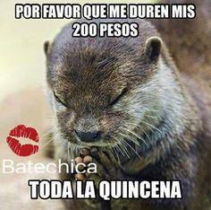 Quincena