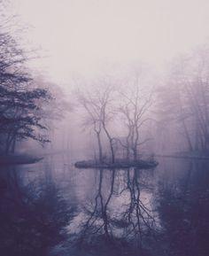 Forest lake/meditation spot