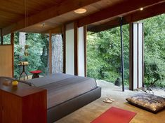 A room of windows in the woods. Yesss please!