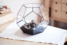 I WANT IT ON MY DESK AT WORK! glass terrarium dodecahedron by boxwoodtree on Etsy, $110.00