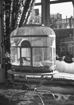 A view of Elsa Schiaparelli's apartment.