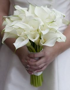 Calla lilies are a sophisticated choice in this elegant white #bridalbouquet