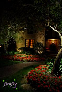 green outdoor partnership with local landscape lighting professionals to install design and maintain best landscape lighting work