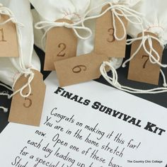 Send your college student this finals survival kit for a fun care package they will never forget. Complete instructions along with a free printable note.