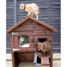 Cute wooden pet house for cats