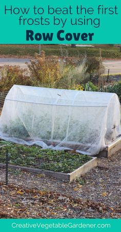 Harvest more food for longer in fall by using row covers and frost cloths in your garden.
