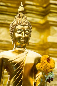 Buddha statue. Wat Phrathat Doi Suthep. Chiang Mai, Thailand. Loved and pinned by www.downdogboutique.com