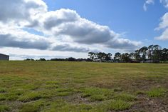 Horse Property for Sale in Hernando County in Florida. Owner Financing Location Location Location 10 acres pasture with barn, fenced and gated.  Also available 5 acres of pasture fenced on 3 sides. Withlacoochee State Forest Croom Equestrian Trails  Right across the road.