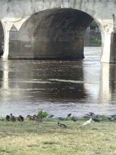 Châtellerault, Vienne (Au fil du pont... par Ève Chêne-Dubois)