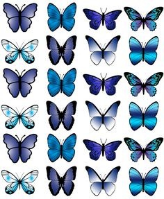 24 X Medium Blue Butterfly Edible Cup Cake Toppers Party Wedding Decoration Butterfly Party, Butterfly Cakes, Purple Butterfly, Butterflies, Frozen Paper Dolls, 30th Birthday Cake Topper, Edible Cups, Ballet Painting, Butterfly Background