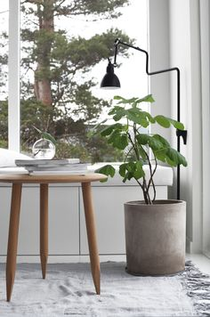 Hoof table, Lampe Gras and my favorite reading nook. By Elisabeth Heier
