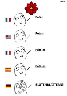 German language differences these make me giggle every time.