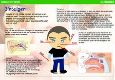 Zintuigen - Taakkaarten  Te gebruiken in hoekenwerk, zelfstandig werk, actief leren, ......