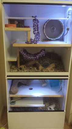 Our 2nd home made degu cage, made from ikea bargin corner wardrobe