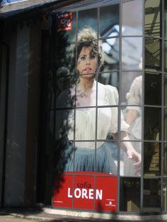 Sophia Loren   A tribute to Sophia Loren at a cinema museum.