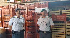 Sequestrate a Giugliano in Campania conserve alimentari in pessime condizioni di conservazione | Report Campania