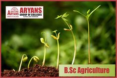 The future belongs to those who believe in the beauty of their dreams!!! Admissions open 2017 BSc(Agriculture) @ARYANS BA-LL.B | LL.B | B.TECH | LEET | MBA | BBA | BCA | B.Sc(Agriculture) | MA(Edu) | B.Ed | BA | B.Com | GNM | ANM | POLYTECHNIC DIPLOMA For more info www.aryans.edu.in or Call 1800-3000-0388