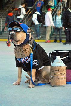 Woof Mets