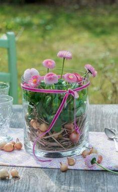Glasvasen sind für eine Deko mit luftig-leichter Ausstrahlung eine gute Wahl. Den Bellis-Topf mit etwas Stroh umwickeln und ins Glas setzen sowie den verbleibenden Zwischenraum mit ein paar kleinen Steckzwiebeln ausfüllen