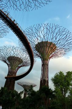 Gardens by the Bay, one of Singapore's newest and most exciting tourist attractions, is an amazing landscape and gardening project | Singapore travel tips