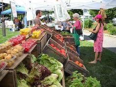 Stoneham Farmer's Market!