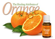 Anti-carcinogenic and anti-tumoral, based on it's high 85%-96% d-limonene chemistry, ORANGE oil has been documented to combat tumor growth in over 50 clinical studies and is being used by individuals as a holistic cancer treatment.