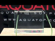AQUATOP Tips & Tricks: CF Series Canister Filter Modification for Turtle Tanks & Paludariums - YouTube