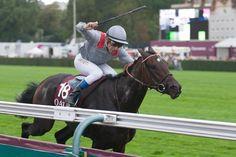 Treve - Longchamp 6th October 2013