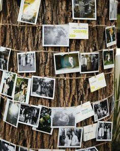 Wrap brown string around tree, childhood photos through now