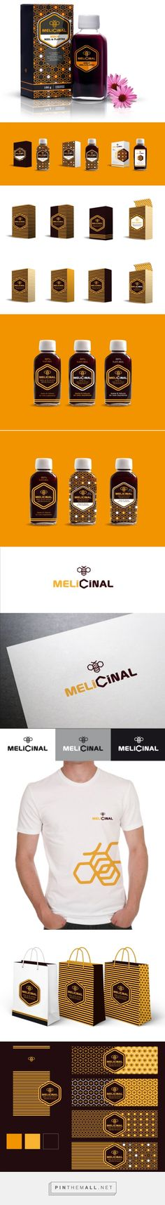 Melicinal by Patricia Robertson at Coroflot.com curated by Packaging Diva PD. Nice identity patterned packaging project.