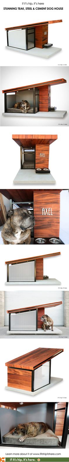How great is this dog house? Learn all the details price and more at http://www.ifitshipitshere.com/rahdesign-mdk9-dog-haus/