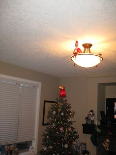 December 22, 2014 ~ We found Sparky in our living room on top of our light fixture!