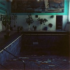 Spooky pools:school turned home, swimming pool turned sitting area. Derelict Places, Abandoned Places, Empty Pool, Hotel Pool, Bug Hotel, Indoor Swimming Pools, Haunted Places, Pool Houses, In Ground Pools