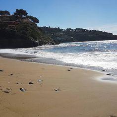 Live dalla #spiaggia di #morcone a #capoliveri. Continuate a taggare le vostre foto con #isoladelbaapp il tag delle vostre vacanze all'#isoladelba. Visita http://ift.tt/1NHxzN3