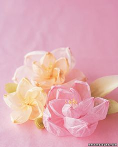 Shaped Tissue Paper Flowers