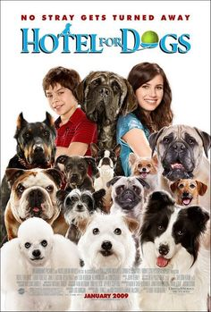 Directed by Thor Freudenthal.  With Emma Roberts, Jake T. Austin, Lisa Kudrow, Don Cheadle. Two kids secretly take in stray dogs at a vacant hotel.