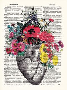 Anatomical Heart and Flowers Human Anatomical Heart