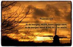 Psalmen 5:4