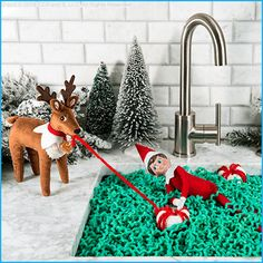 Ideas for Elves with Reindeer Pets – The Elf on the Shelf