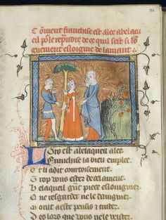 The roman de la rose was originally a french tekst. It has been translated in dutch in the early 14th century. The roman was one of the first knightly novel without knights traveling around. It has been added on to, was at times explicit, ironic and philosofical.