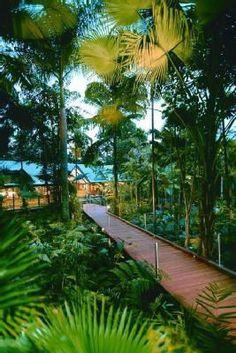 Silky Oaks Lodge - Cairns QLD